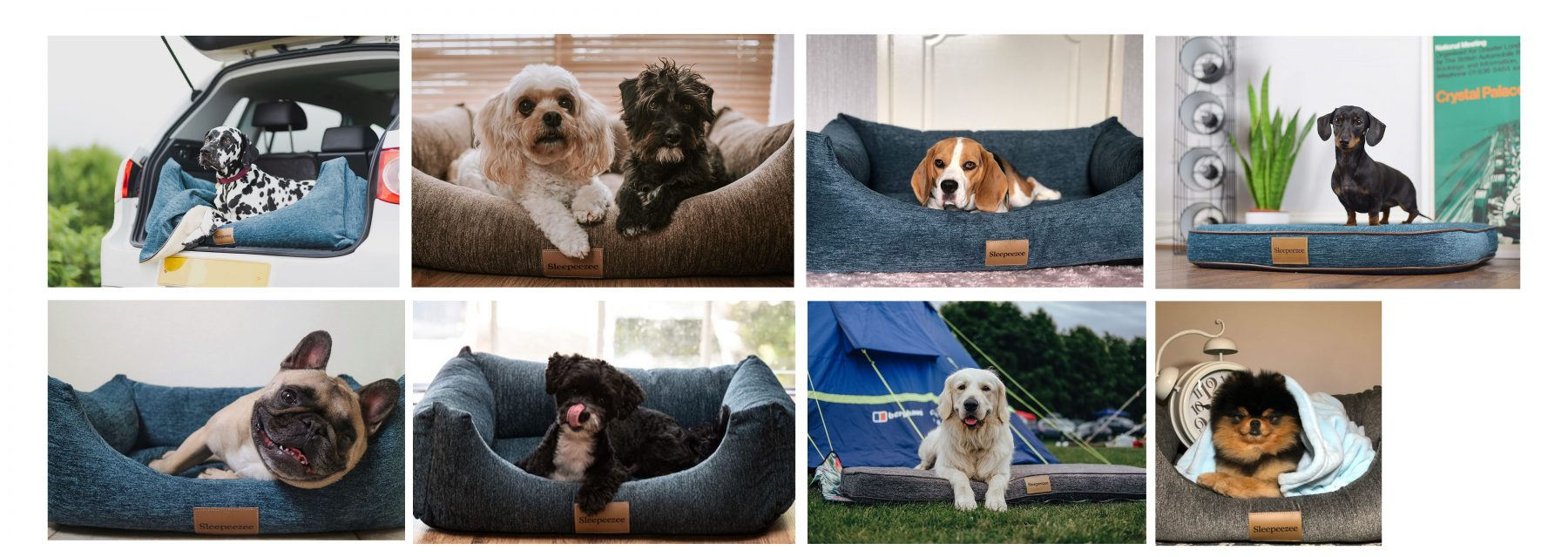 Collage of dogs in Sleepeezee Dog Beds